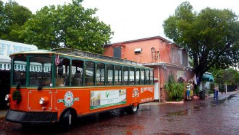 Key West Day Trip & Trolley Tour from Miami