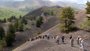 Half-Day Mount Etna Tour