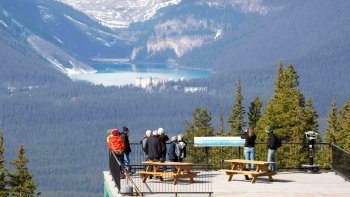 Lake Louise Gondola & Wildlife Interpretive Centre Visit