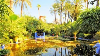 The Best of Marrakech Full-Day Tour with Lunch
