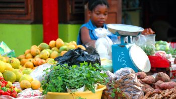 Grenadian Morning Market Shuttle