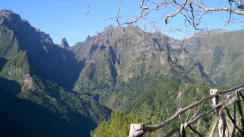Levada Walking Tour & Jeep Safari Expedition