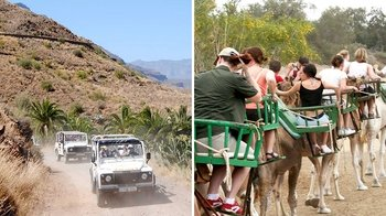 Thrilling 4x4 Safari & Camel Ride Adventure