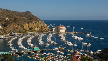Catalina Island Avalon Scenic Tour with Roundtrip Transfers