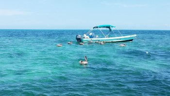 Cabo Catoche Snorkeling & Fishing Tour