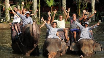 Whitewater Rafting & Elephant Safari Ride