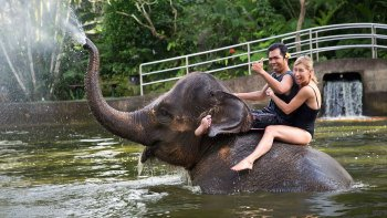 Bathe & Breakfast with Elephants & River Rafting