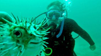 Discover Scuba Diving Experience for Beginners