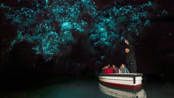 Private Waitomo Caves Tour