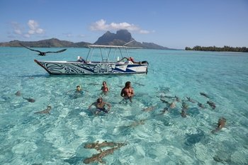 Things To Do in Bora Bora 2017: Top Attractions ...