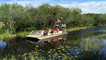 Everglades Tour & Airboat Trip