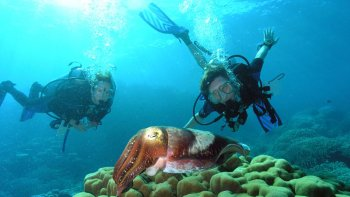 Discovering Scuba Diving in Marmaris
