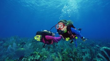 Discovering Scuba Diving