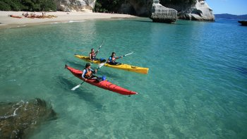 Private Coromandel Peninsula Tour