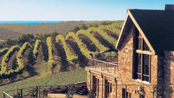 Private McLaren Vale Intimate Winery Tour