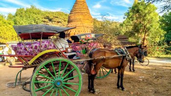 Private Temples Sightseeing & Royal Horse Cart Ride