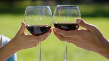 Private Sommelier-Led Winetasting Tour in Santa Ynez Valley with Lunch
