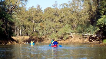 Half-Day Goulburn River Canoe Rental