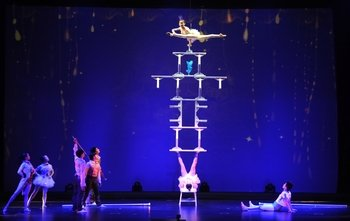 Chinese Acrobats Show & City Lights Tour