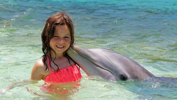 Blue Lagoon Dolphin Encounter