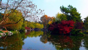 Private Hangzhou Day Trip from Shanghai with West Lake Cruise