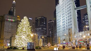 Chicago Holiday Lights Trolley and Christmas Market