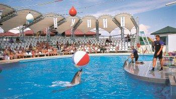 ,Dolphinland