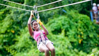 Rainforest Canopy Adventure Tour