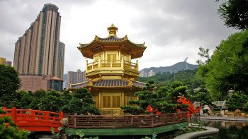 Kowloon Life & Culture Tour