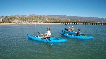 Kayaking Tour at West Beach