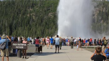 Self-Guided Tour of Yellowstone Lower Loop from Gardiner