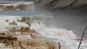 Self-Guided Yellowstone Upper Loop Tour from Jackson Hole