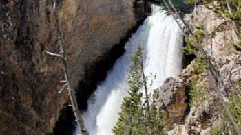Self-Guided Yellowstone Upper Loop Tour from Cooke City