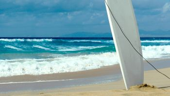 Surfboard Rental with Beach Delivery