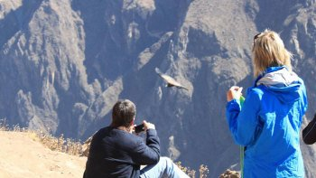 4-Day Arequipa & Colca Canyon Tour