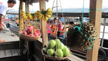Private Mekong Delta & Cai Be Floating Market Tour