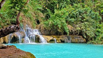 Private Full-Day Kuang Si Falls Excursion