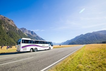 Milford Sound Coach & Cruise Day Tour