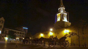 Horse-Drawn Carriage Ride with Dinner