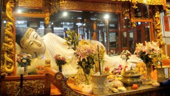 Jade Buddha Temple & Old City Day Tour