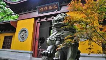 Private Full-Day Lingyin Temple, Dragon Well & West Lake Show