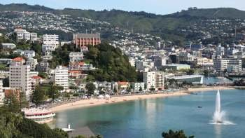 Wellington Cruise Excursion – Half Day City Tour