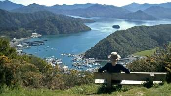 Picton Cruise Excursion - Gondola Hill 4x4 Tour