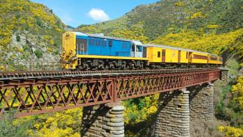 Dunedin Cruise Excursion – Taieri Gorge Railway & Sightseeing Tour