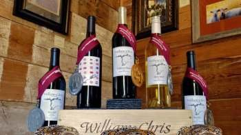 Full-Day Winetasting Tour in Texas Hill Country