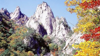 7-Day Discover Korea Tour