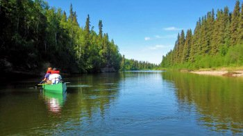 Full-Day Chena River Canoe Trip