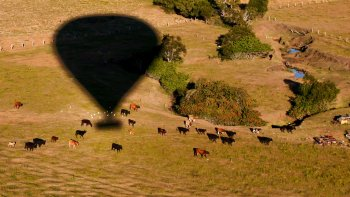 Yarra Valley Ballooning & Culinary Experience