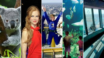 Ultimate Sydney Pass: Sydney Tower, SEA LIFE, WILD LIFE & Madam Tussauds