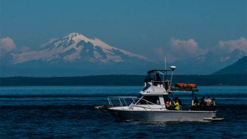 One-Way Private Water Taxi from Friday Harbour to Anacortes
